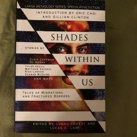 Shades Within Us: Tales of Migrations and Fractured Borders — Read an Excerpt
